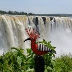 Hoopoe @ Victoria Falls